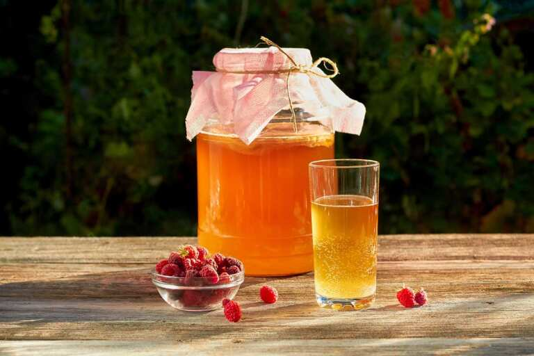 Top health benefits of Kombucha